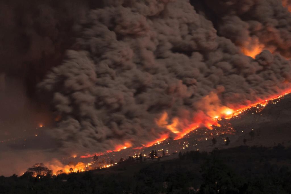 new south wales bushfires